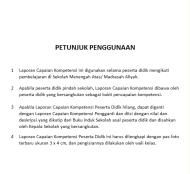 LCK Raport3